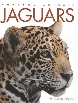 Jaguars By Bodden, Valerie